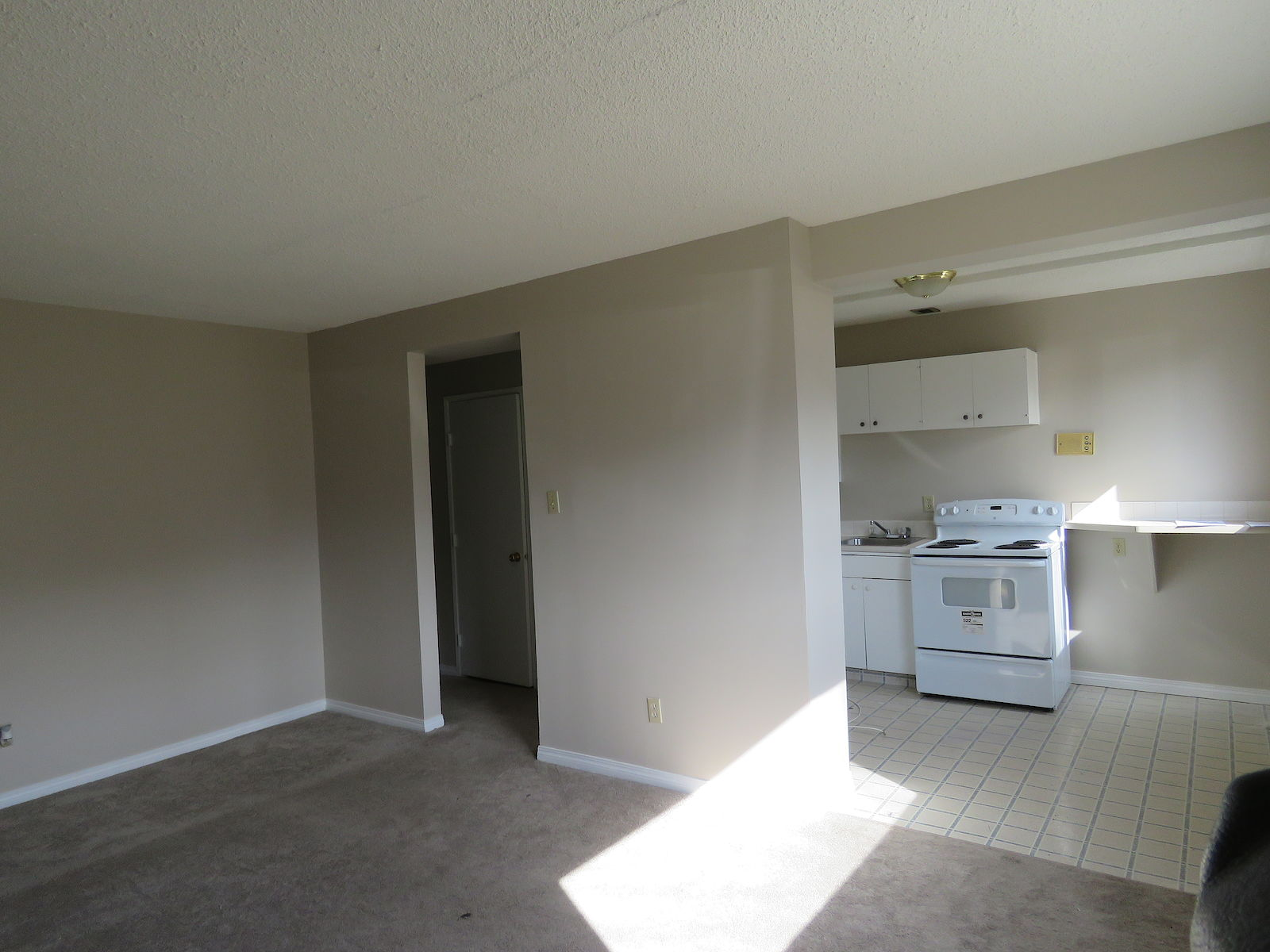 Edmonton Apartment For Rent Queen Mary Park Central 1 Bedroom Apartment Id 273098
