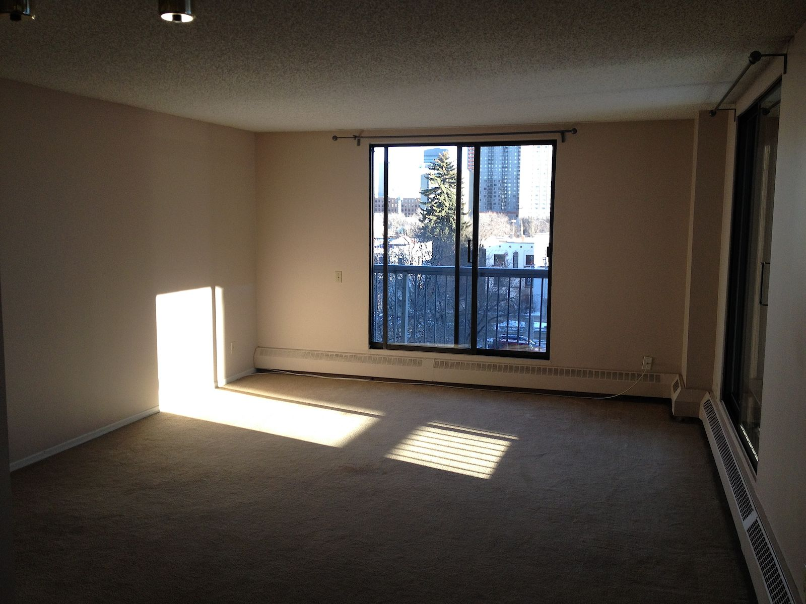 Edmonton Apartment For Rent Downtown Nw Apartment 1 2 Or 3 Id 284560