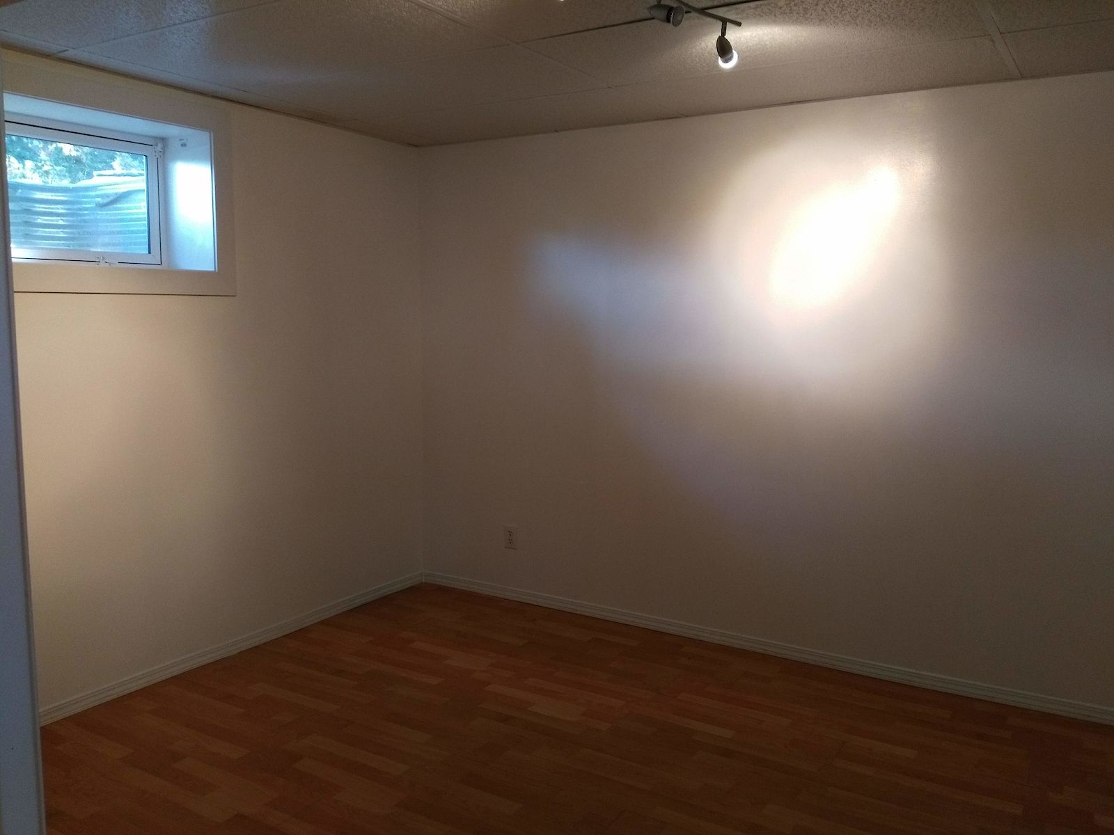 Spacious And Bright 1 Bedroom + Den Basement In Edgemont
