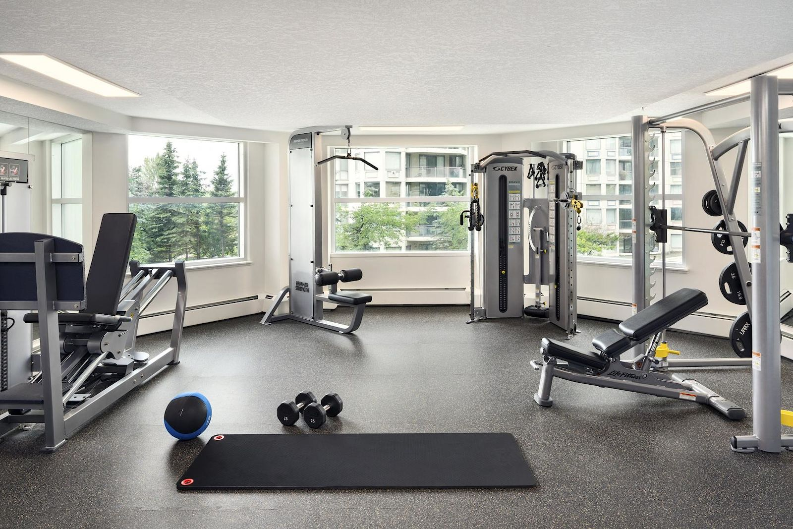 Calgary pet friendly apartment for rent downtown discovery