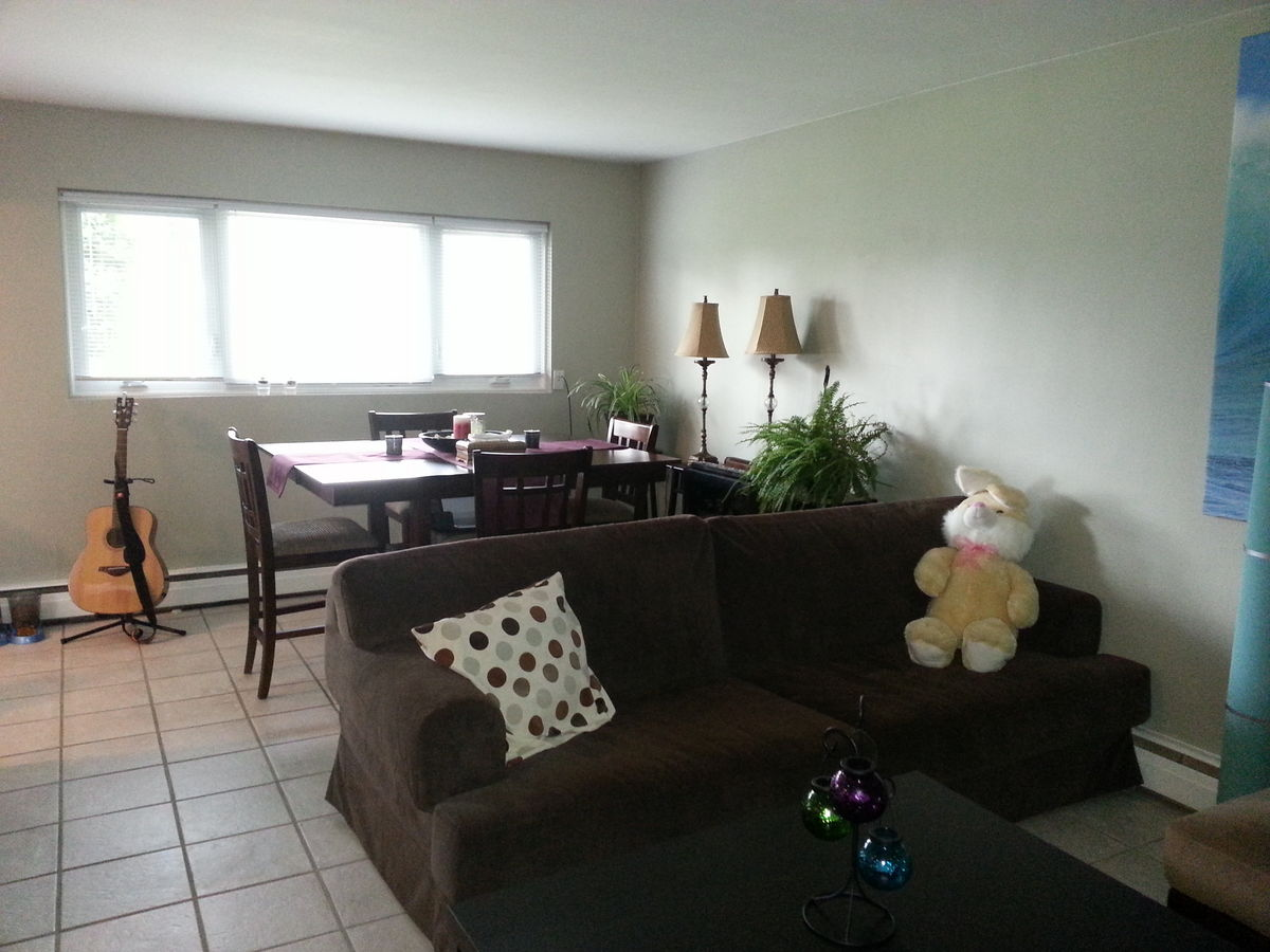 Calgary apartment for rent glenbrook inner city sw for 9 foot wide living room
