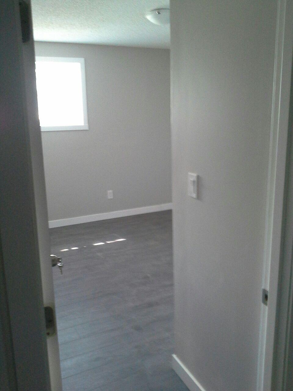 Calgary Basement For Rent Dalhousie Only Brand New Wiring Reno Lrt Nw
